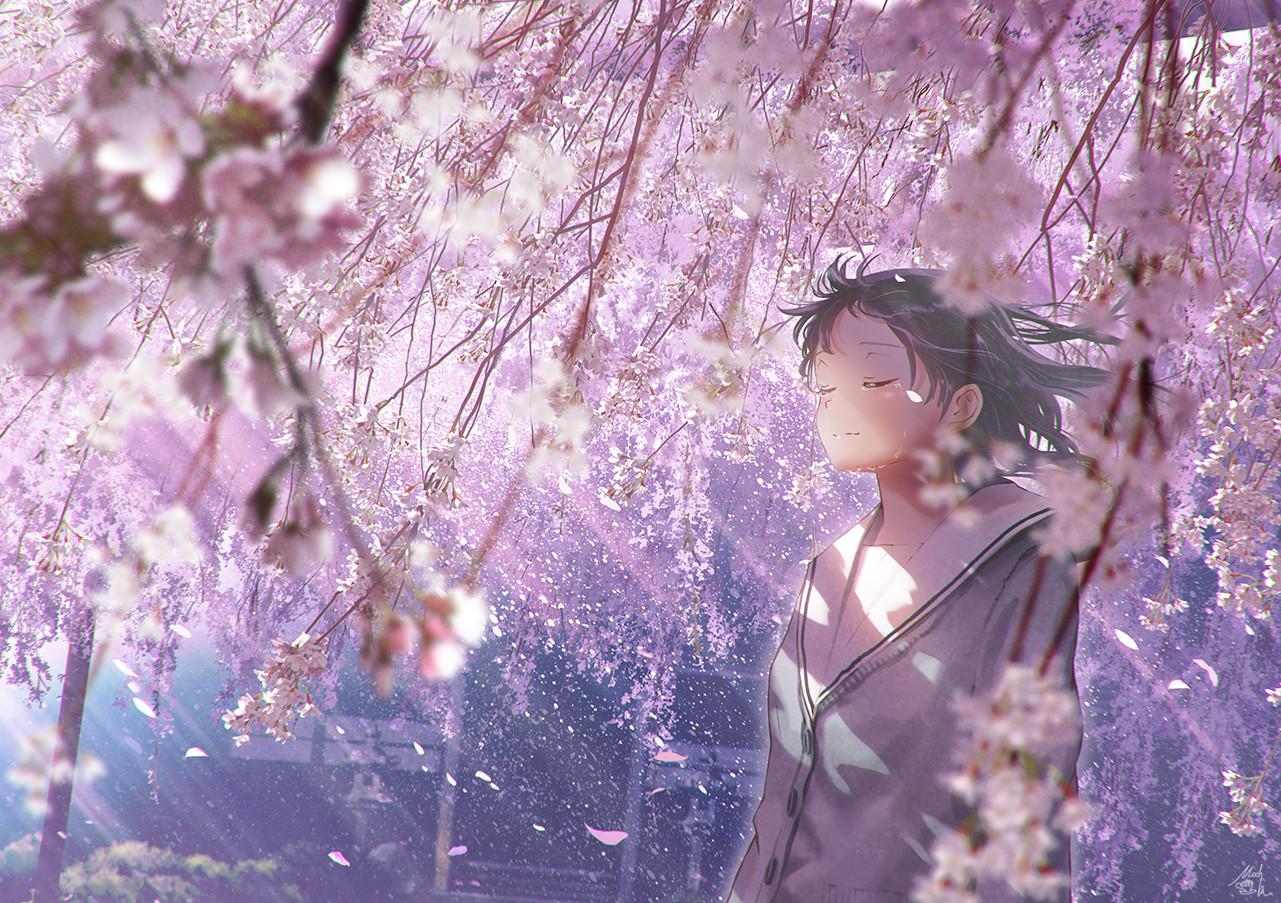 桜包み - mocha